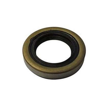 Picture of Balancer Shaft Oil Seal, E-Z-Go 4 Cycle Gas 1991-Up, MCI