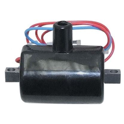 Picture of Ignition Coil, E-Z-Go 2-cycle Gas 81-94