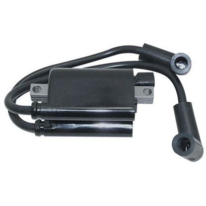 Picture of Ignition Coil, E-Z-Go Gas 03+ MCI