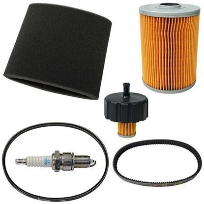 Picture of Deluxe Tune Up Kit, Yamaha G2/G9 4-cycle Gas