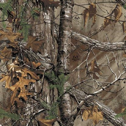 Picture of Golf Car Body Wrap Camouflage Decal Kit - Realtree Xtra